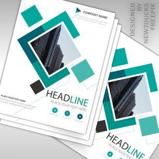 Basic Copy / Print